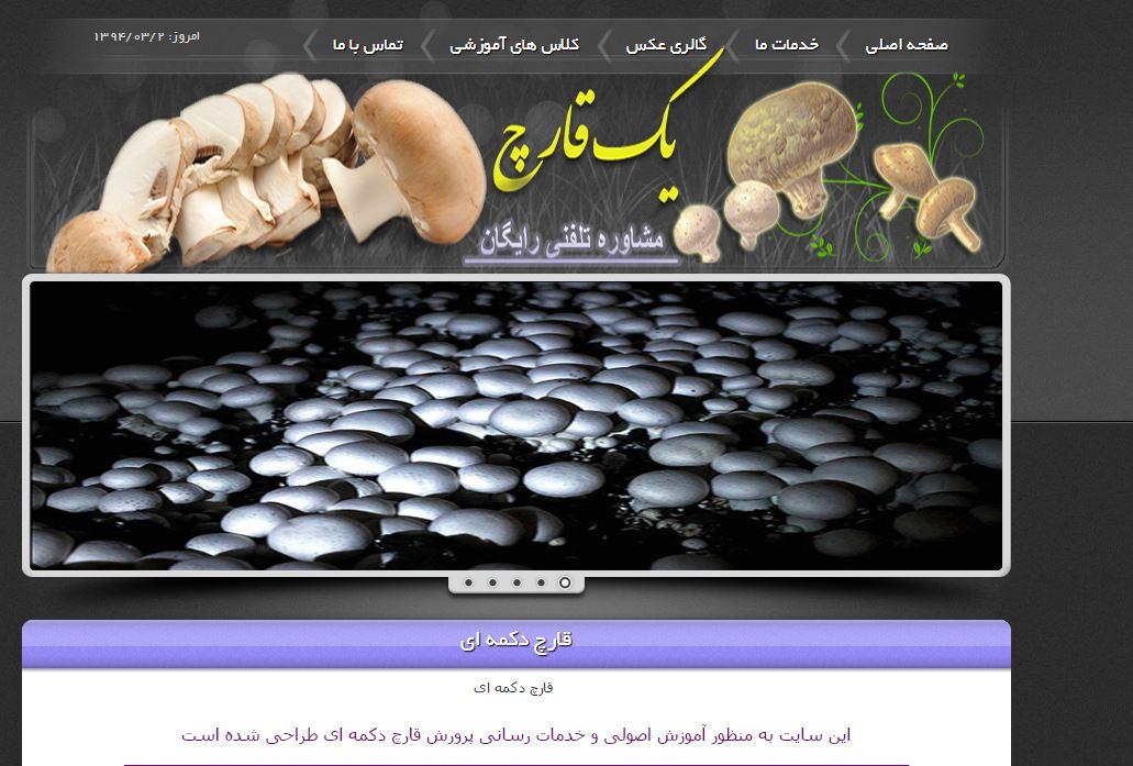 طراحی سایت تولیدی قارچ