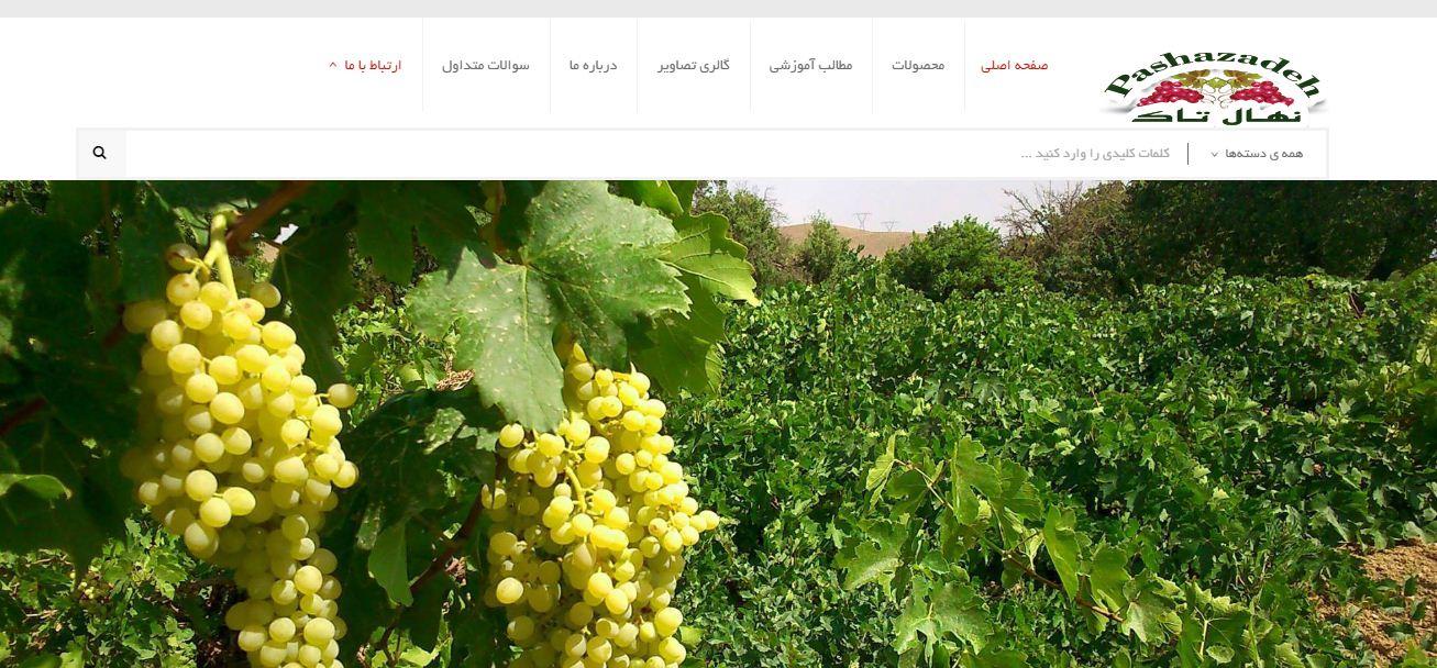 طراحی سایت نهالستان