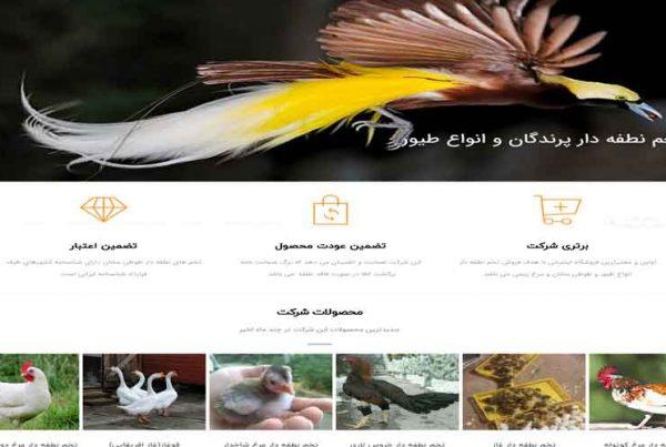 طراحی سایت فروش تخم نطفه دار