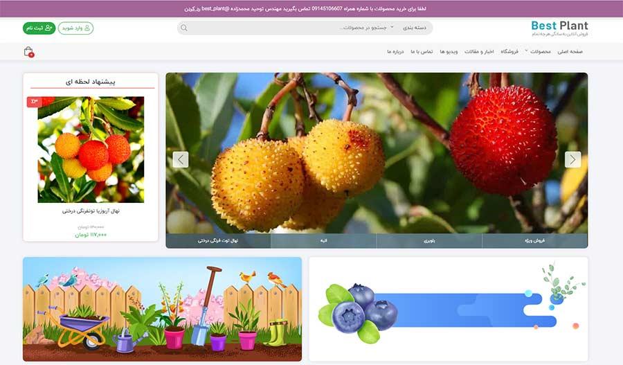 طراحی سایت فروشگاه اینترنتی نهال