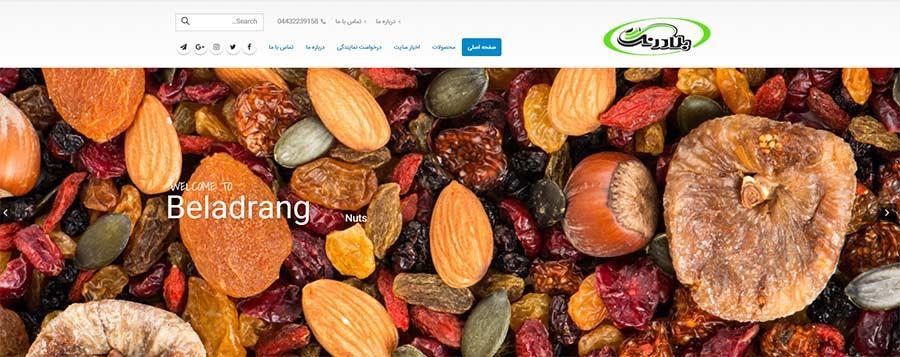 طراحی سایت آجیلی